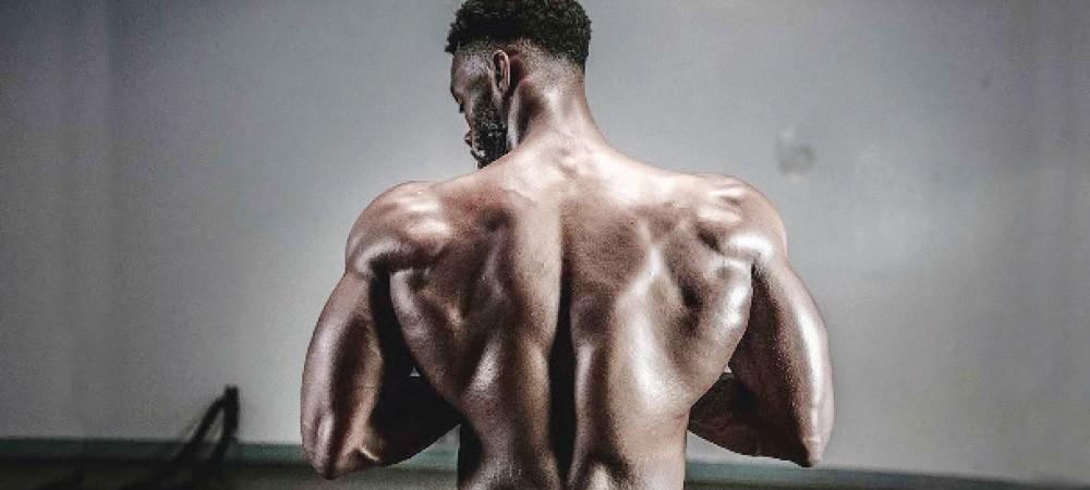 body bulking